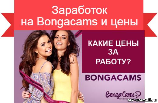 Заработок на Bongacams расценки и усилия